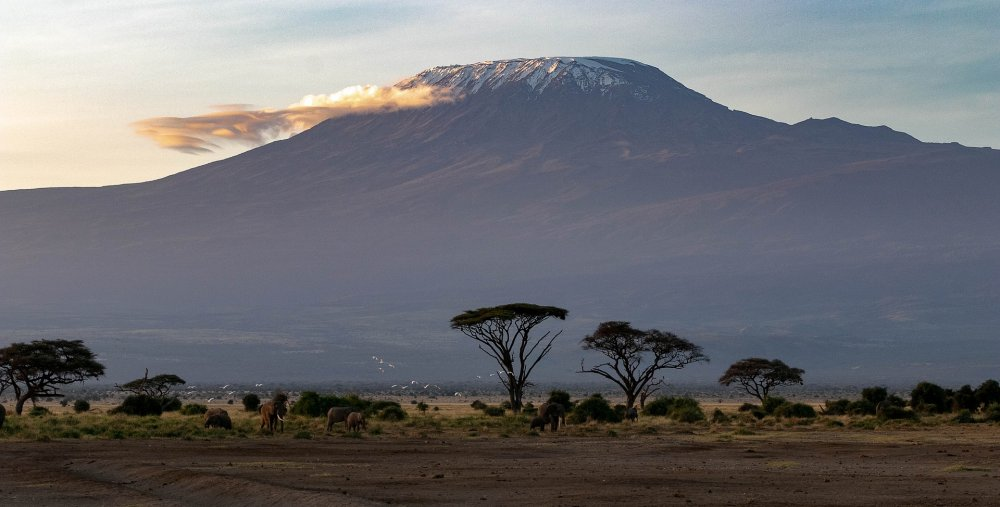 2021 m. rudenį atostogaukite egzotiškoje Kenijoje!