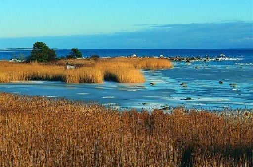 3 dienų pažintis su Baltijos šalių perliukais - Talinas, Saremos sala, Ryga bei Rundalė