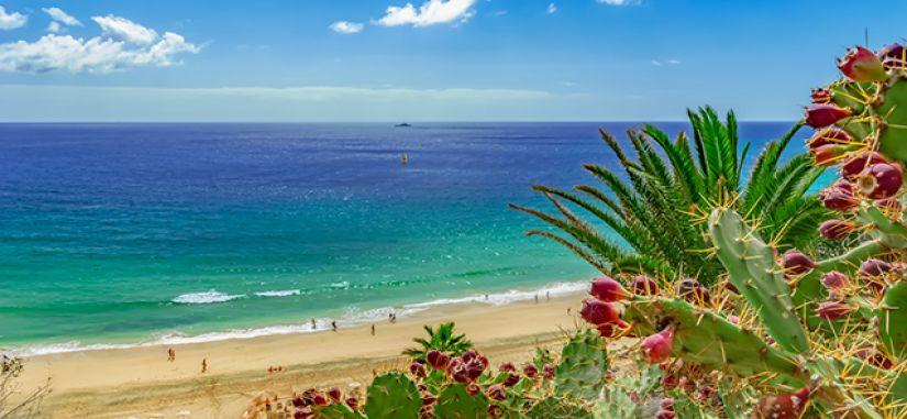 Gegužę vykstame į Fuerteventūrą - smėlio paplūdimių rojų!