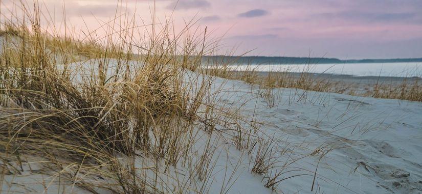 Poilsis prie jūros - Grand Baltic Dunes 4* Palangoje! GALIOJA 200 EUR KOMPENSACIJA MEDIKAMS!