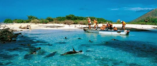 Kolumbija - Ekvadoras. Galapagų salos. Lotynų Amerikos paslaptis 17d.