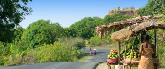 Naujiena iš Lietuvos - Egzotiškasis Madagaskaras!