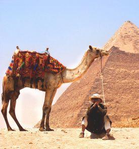Naujuosius pasitikite Egipte! Iškeiskite sniegą į palmes