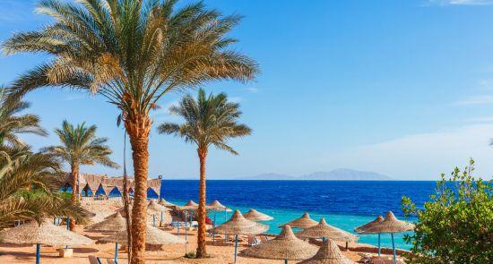 Poilsis puikiuose Albatros tinklo viešbučiuose Egipte! 2021 m.