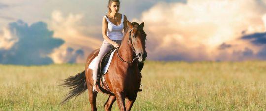 Puiki pramoga visai šeimai - jojimas žirgais gamtoje lydint instruktoriui