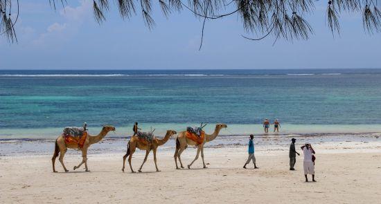 Rudenį atostogaukite egzotiškoje Kenijoje!