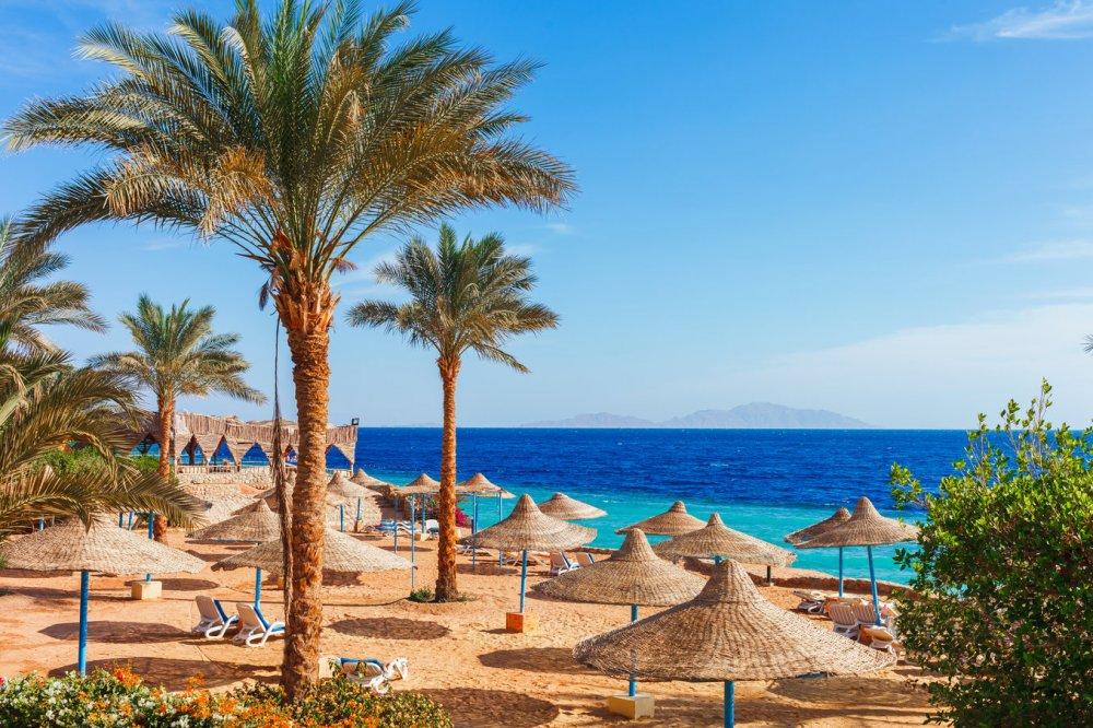 Užburiantis poilsis prie raudonosios jūros Šarm El Šeiche!