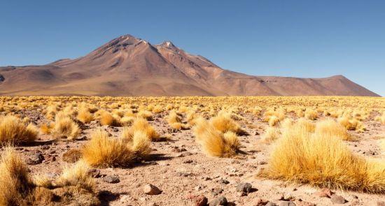Visa Čilė nuo Atakamos dykumos iki Patagonijos ledynų, aplankant Velykų salą 17d.