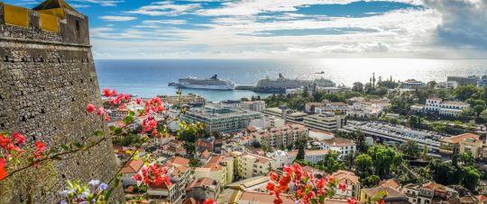 Visu metus žydinti ir žaliuojanti sala- Madeira!
